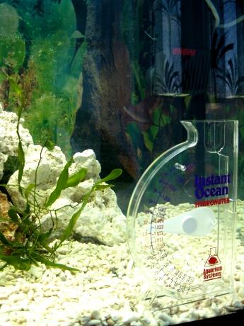 Messgerät für den Salzgehalt im Wasser