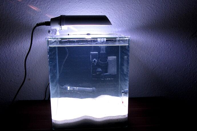 Nano 2.Tag - Das Wasser klärt sich