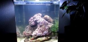 nano 18.Oktober 2012 - Steine ergänzt